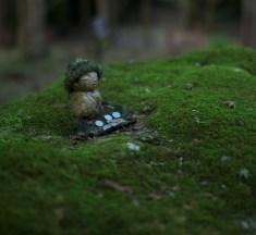 【京都】緑に包まれた神秘的な京都のコケ庭10選!