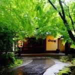 20141001-145-1-kurokawaonsen