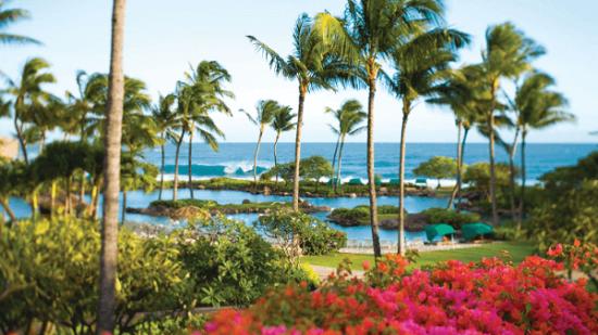 20141115-194-7-kauai-hotel