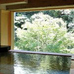 20150303-299-9-yamanakaonsen