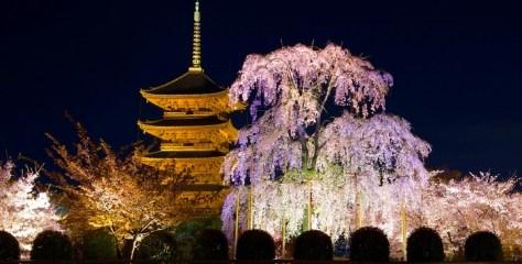 京都観光の超定番!何度でも訪れたい京都の人気スポット10選。