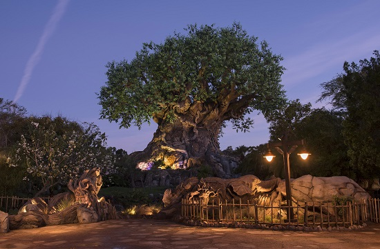 Tree of Life Grows New Roots at Disney's Animal Kingdom