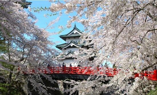 20160501-694-43-hirosaki-kanko
