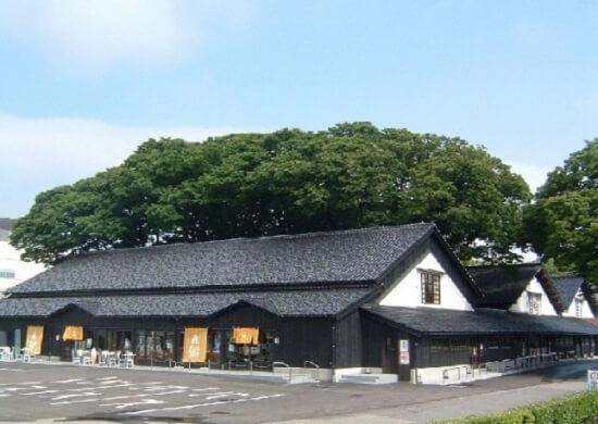 20160505-698-35-sakata-kanko