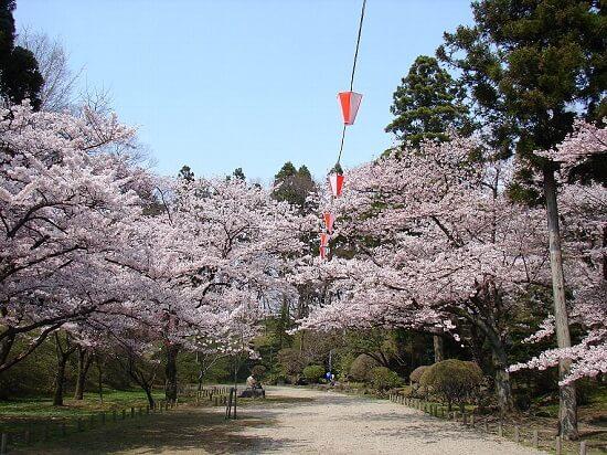20160524-710-16-akita-shi-kanko