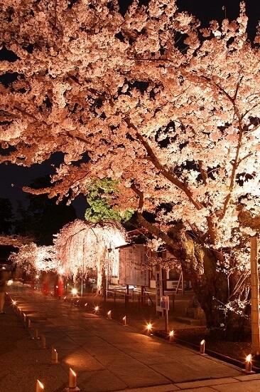 20160527-713-28-shiogama-kanko