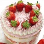 ケーキ 甘味