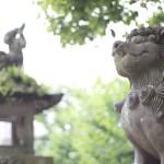 神社 仏閣 風景