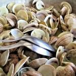 貝類 食事 和食