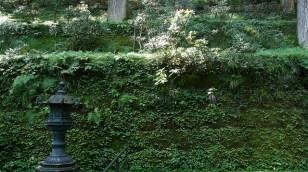 Vers le mausolée de Iemitsu Tokugawa