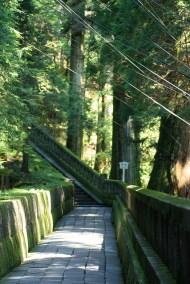 chemin qui mène au mausolée de Ieyasu Tokugawa