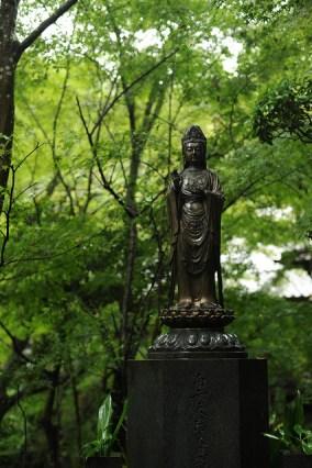 T三瀧寺 emple Mitaki