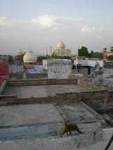 la vue de mon hôtel (Agra)
