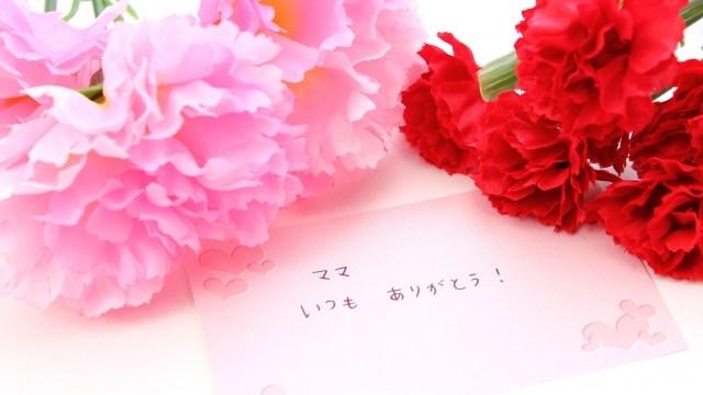 母の日に贈りたいちょっと変わったカーネーションや珍しいお花を紹介!