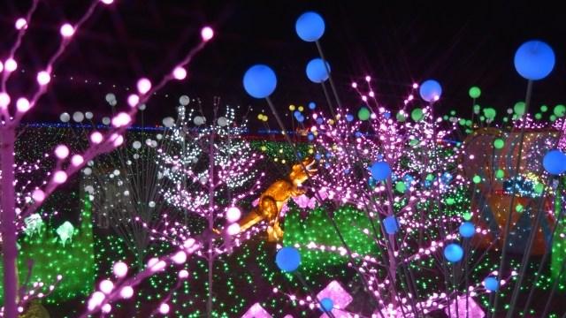 東京ドイツ村イルミネーション混雑は?駐車場情報や車で回る楽しみ方を紹介!