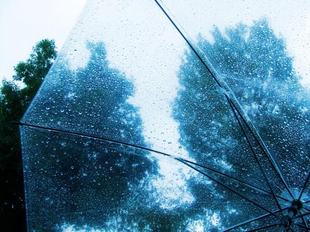 ビニール傘を100均のシールで可愛くアレンジ!ダイソー編