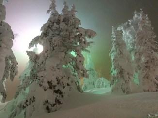 山形 蔵王温泉 樹氷 Yamagata Zao Onsen Hot springs Juhyo Snow Monsters Twitter