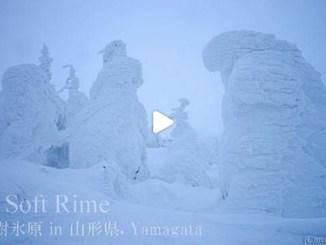 【TOP BUZZ】山形蔵王 樹氷 Yamagata Zao Jyuho Snow soft Rimes