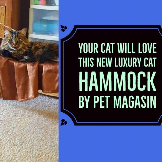 Your Cat Will Love This NEW Luxury Cat Hammock