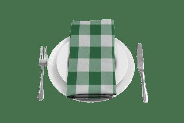 Gingham Green Napkin