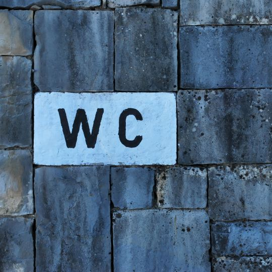 Brick wall with a WC sign on it