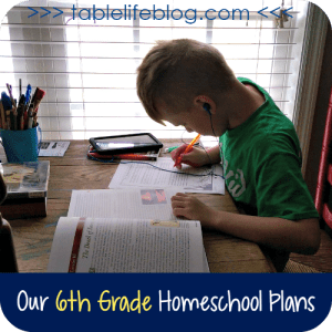 A peek into our homeschool