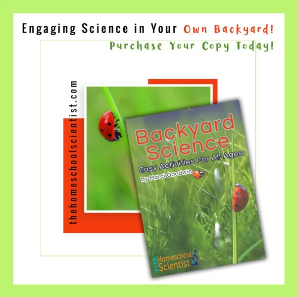 Backyard Science: Easy Activities for All Ages - Mixed Media Bird Nest Art for Kids - The Nature Book Club monthly linkup
