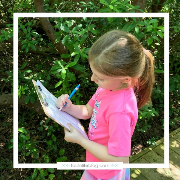 Alphabet Scavenger Hunt Printable: Looking for the alphabet in nature is a great way to incorporate letter recognition with outdoor time!