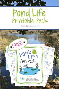 Exploring Pond Life with Over and Under the Pond (+ Free Printables)