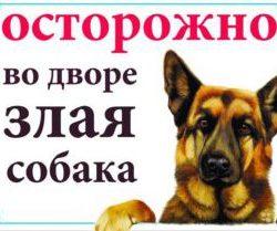 Осторожно во дворе злая собака