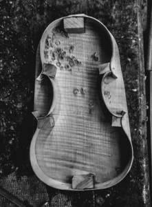 Roman violin Tecchler