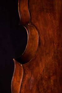 baroque violoncello sycamore back