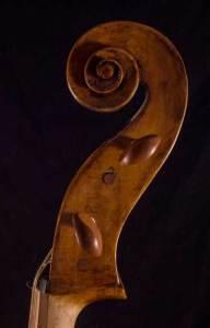 Celoniato scroll head