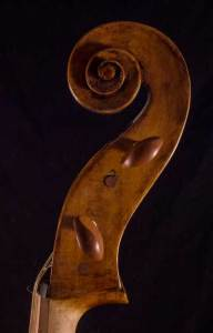 Celoniato scroll head