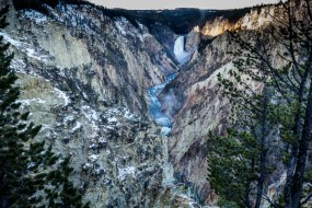 Yellowstone-5289
