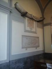 Foto 2 - Osso della balena, esterno della basilica di sant'Antonino a Sorrento