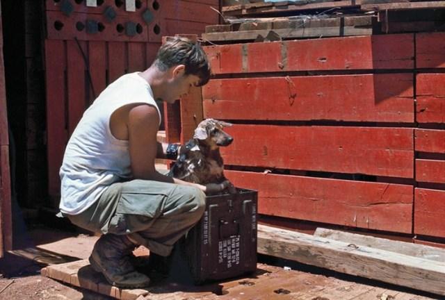 Tắm cho cún cưng trong căn cứ.