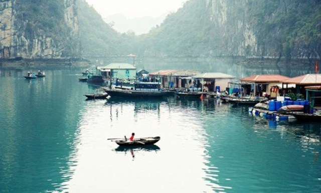 viet-nam-duoc-bao-tay-binh-chon-the-nao-trong-nam-2016