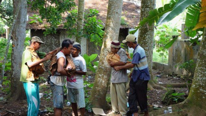 Blog voyage - Indonésie - Java ouest - Environs de Pangandaran et Batu Karas