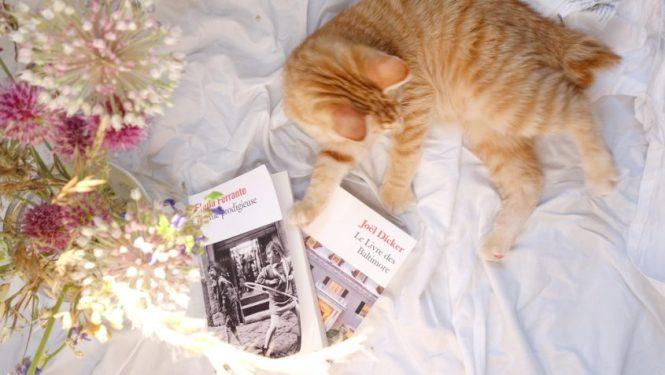 Mes lectures 13 - L'ami prodigieuse Elena Ferrante + Le livre des Baltimore Joel Dicker + La librairie de la place aux herbes Eric Kermel