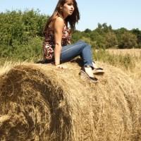 Champs de blé et bottes defoin