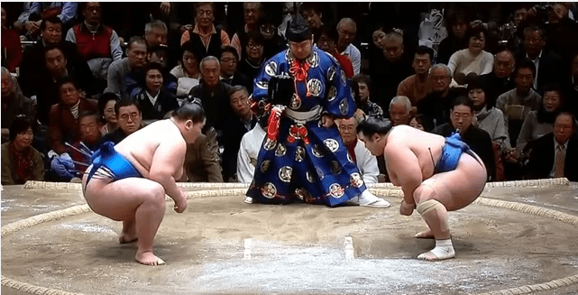 Painful stance for Kotoshogiku