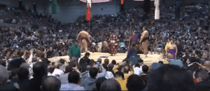 Hakuho returns to the dohyo among flying zabuton