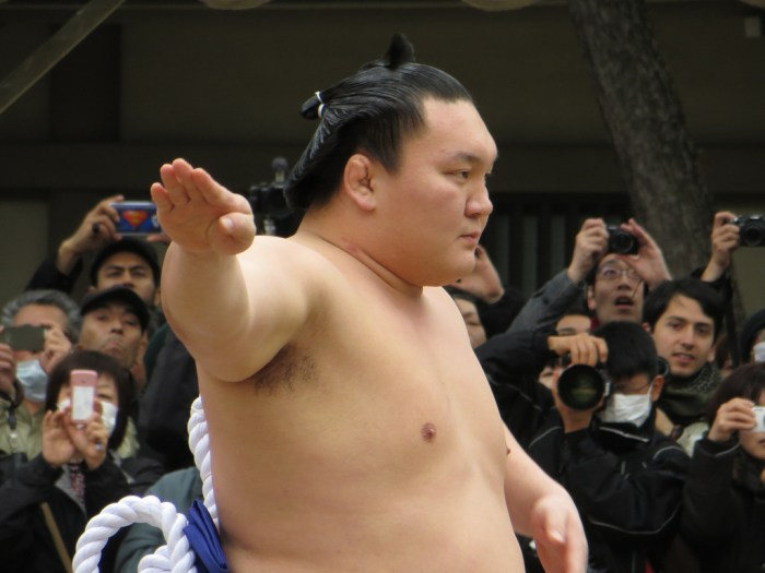 hakuho-meiji