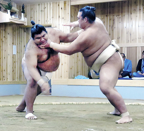 takayasu-training