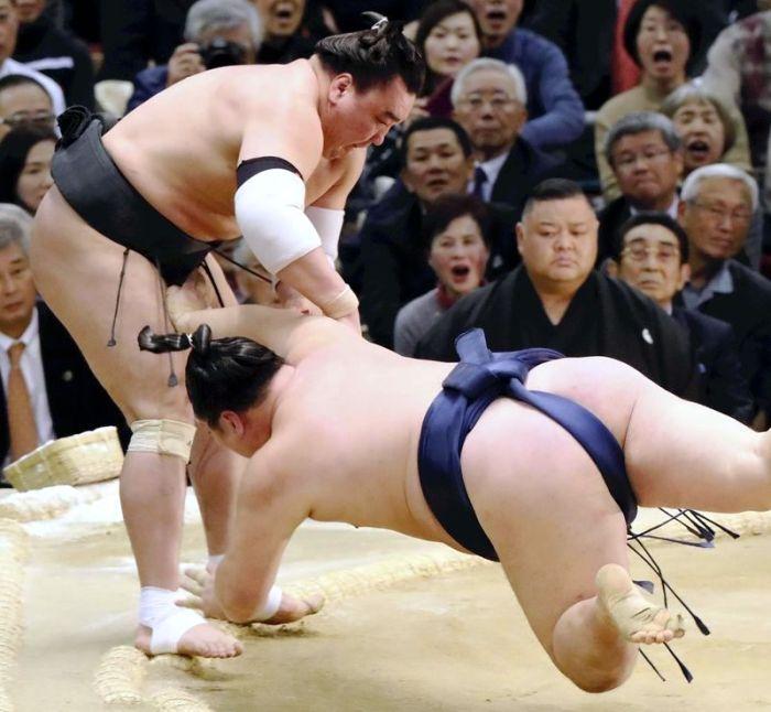 Harumafuji-2