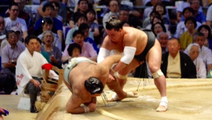 Takayasu-Harumafuji