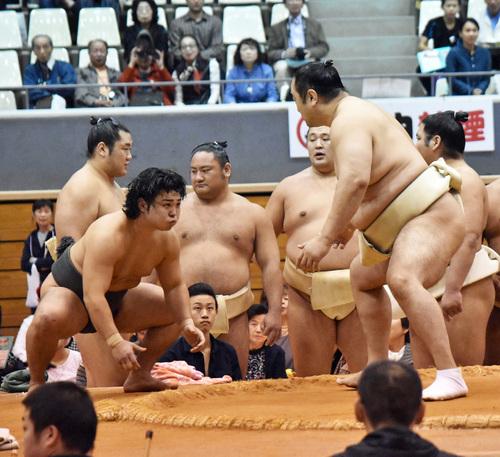 enho-aminishiki