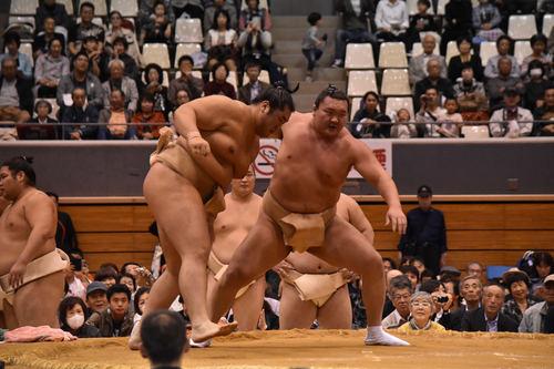 hakuho-butsukari-kagayaki