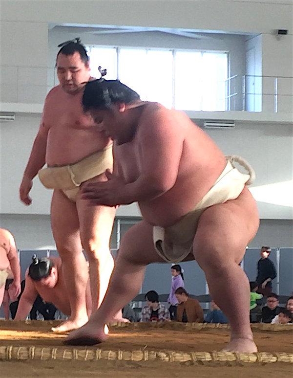 kakuryu-daieisho-butsukari